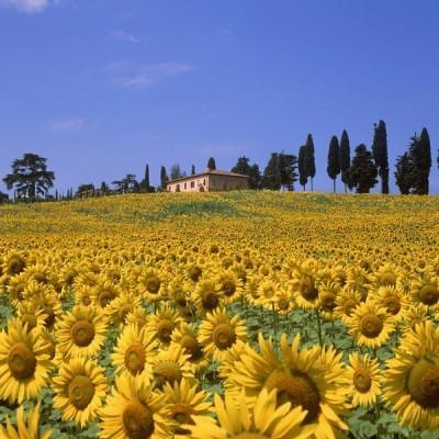 Italy --- Era valley in spring --- Image by © Fabio Muzzi/cultura/Corbis
