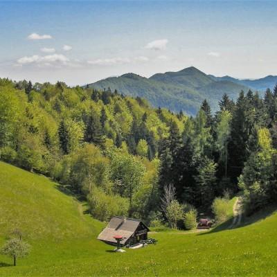 Branko Sebasu: Rajska dolina