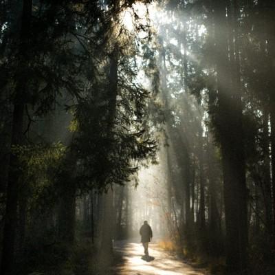 Brane Tuma: Sprehod